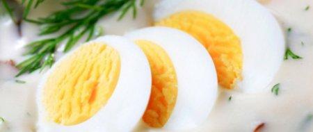 L'allergie à l'œuf est la deuxième allergie la plus fréquemment développée chez l'enfant